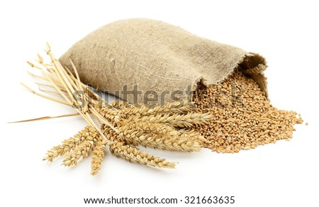 Bag of wheat isolated on white background.