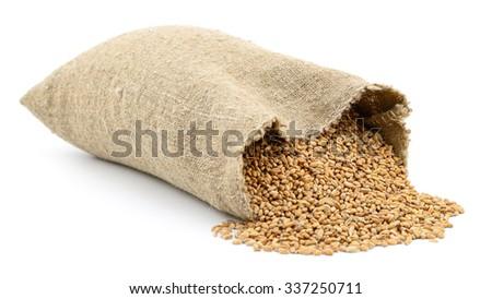 Bag of wheat isolated on white background. - stock photo