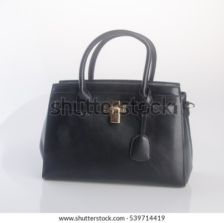 bag or black colour female bag on a background