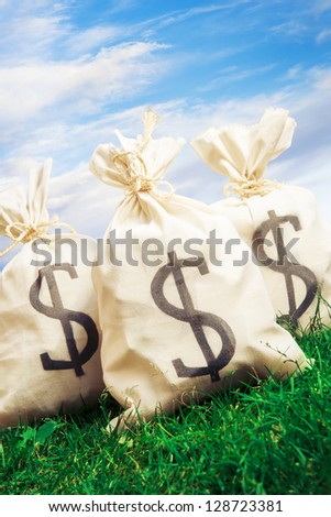 bags of money on a clear bright sky - stock photo