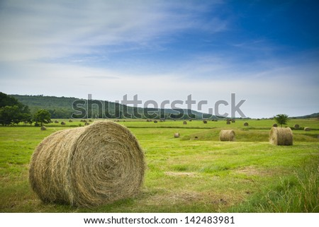 Bail of hay in a field with blue sky and clouds. - stock photo
