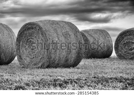 Bails of Hay Black & White