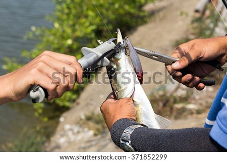 bait bite with  Barracuda Seapike - stock photo