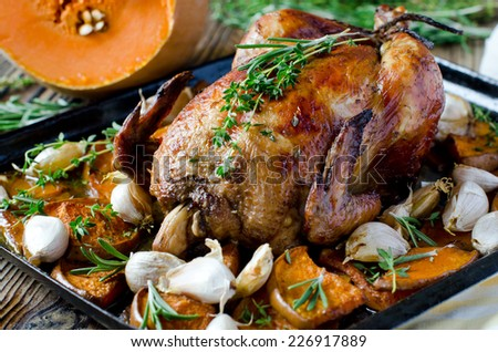 Baked chicken with pumpkin and herbs - stock photo