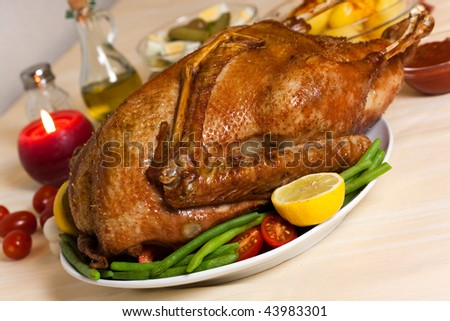 baked  goose with green beans ,potato,red pepper ,salad - stock photo