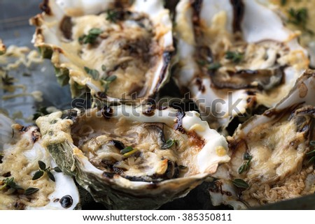 Baked oysters with cheese sauce and thyme on a dark background - stock photo