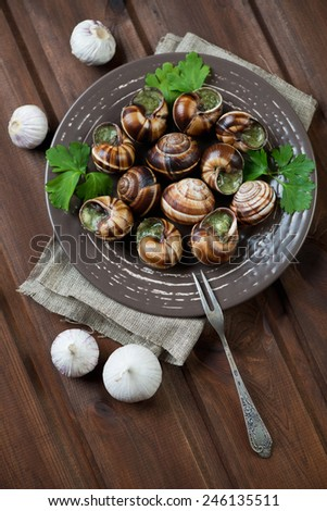 Baked snails with garlic butter, high angle view, studio shot