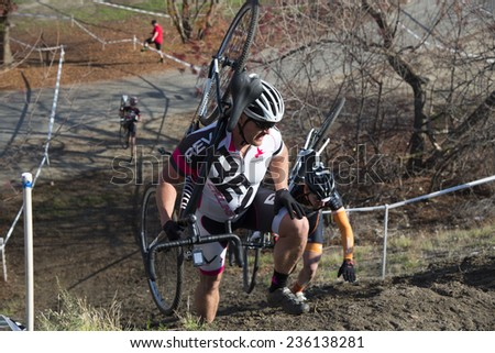 BAKERSFIELD, CA - DECEMBER 6, 2014: Senior men race up a steep, muddy hill, then carry their bikes to the top during the Hart Park Cyclocross. - stock photo