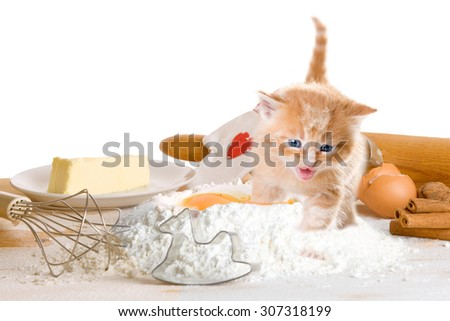 Baking of Christmas cookies with cat - stock photo