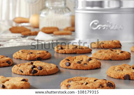 Baking still life of freshly baked chocolate chips cookies on non-stick cookie sheet with canisters, cooling rack and baking supplies in background.  Closeup with shallow dof. - stock photo