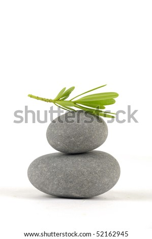 Balanced and green leaf - stock photo