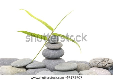 Balanced black zen pebbles and a young green leaf - stock photo
