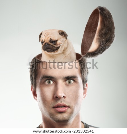 Balanced dog in frighted men opened head. Inner peace concept. - stock photo