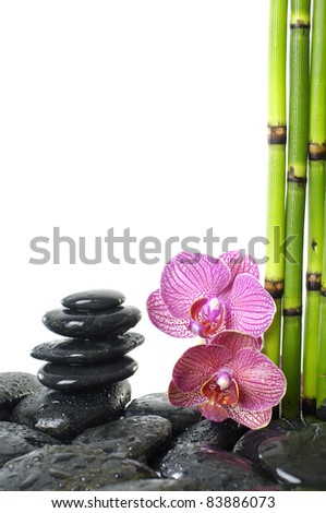 balanced stones with pink orchid and thin bamboo grove