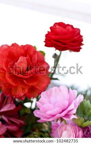 Balcony flowers - stock photo
