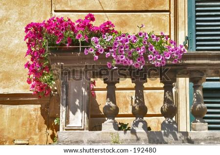 Balcony with flowers - stock photo