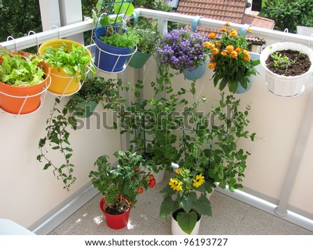 Balcony with flowers and vegetables in flowerpots - stock photo