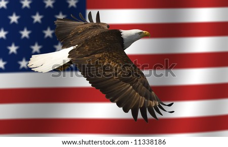 bald eagle flying in front of the American flag - stock photo