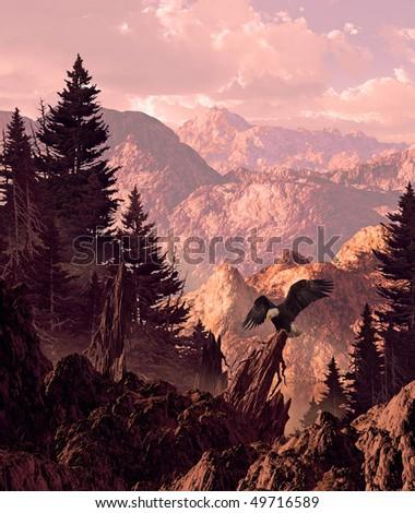 Bald Eagle in Sierra Nevada Mountains - stock photo
