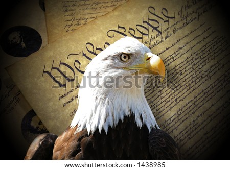 Bald eagle over constitution - stock photo
