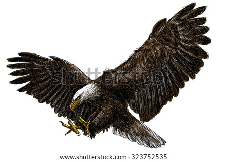 bald eagle render by - photo #14