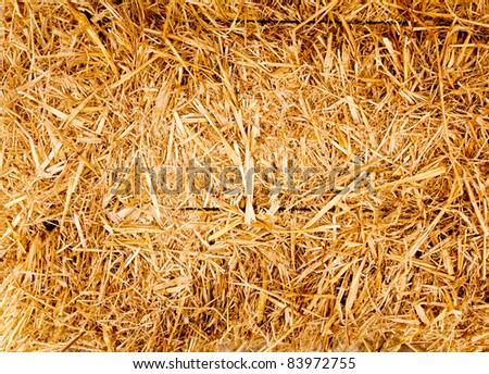 bale golden straw texture for ruminants animal food - stock photo