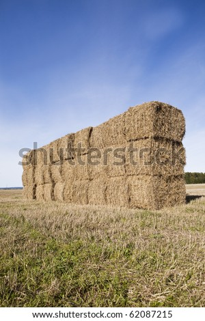 Bale of Haystack on a sunny day - stock photo