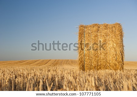 Bale of straw in field at sunrise - stock photo