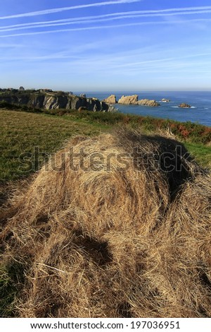 bale of straw on a steep meadow by the sea - stock photo