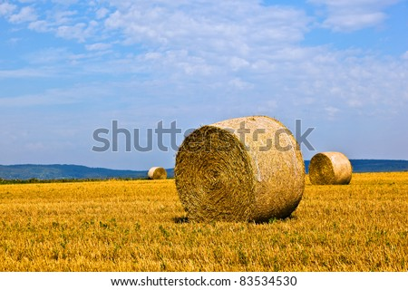 bale of straw on field - stock photo