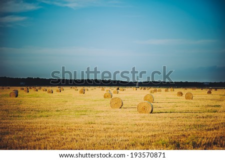 Bale of straw on field. Lithuania rural landscape - stock photo