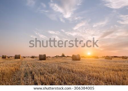 Bales of hay. - stock photo
