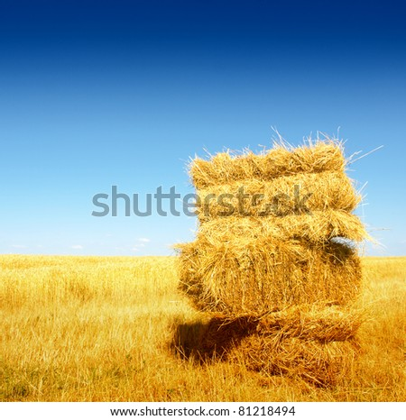 Bales of Hay - stock photo