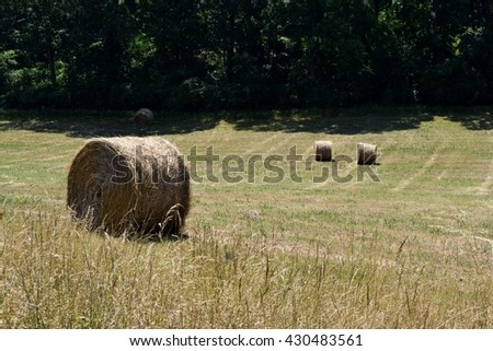 Bales of hay background landscape at rural Georgia, USA.