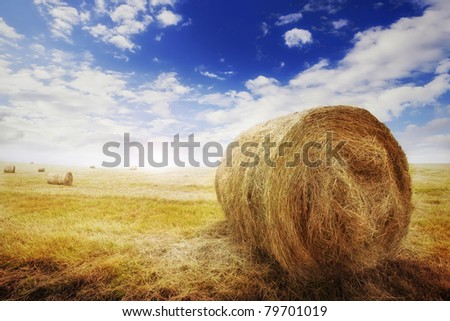 Bales of hay in rural France - stock photo