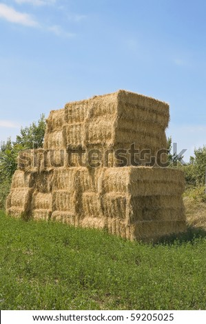Bales of hay in rural setting. - stock photo