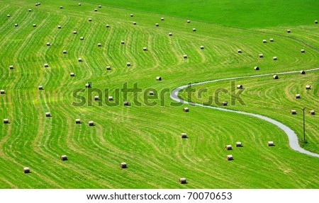 Bales of hay on meadow. Aerial view on summer landscape. - stock photo