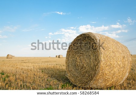 Bales of hay on the cultivated field - stock photo