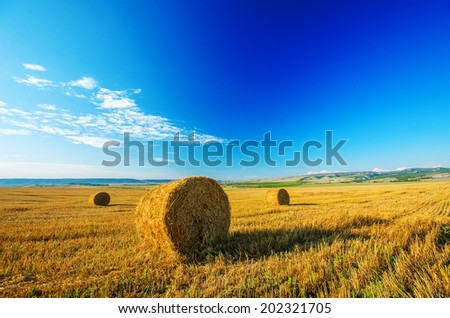 Bales of straw left in the countryside in a sunny day. Natural composition - stock photo