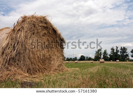 bales of straw on a meadow - stock photo