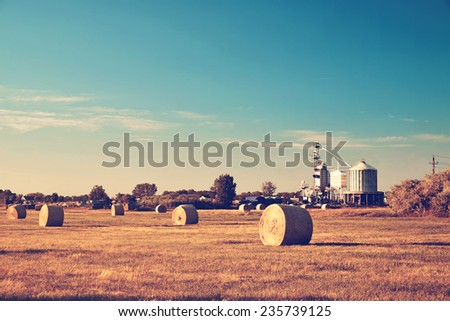Bales on the farmland - stock photo