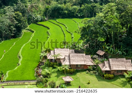 Saranam stock photos royalty free images vectors for Terrace meaning in tamil