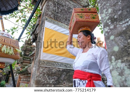 Bali, Indonesia-Dec 07, 2017:Balinese women carry offerings of food baskets on their heads in to the temple in Ubud, Bali. As know as the 'island of the gods' and has numerous religious festivals.