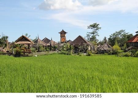 Balinese Rural Scene - stock photo