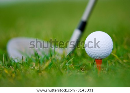 ball and wood of golf on the grass