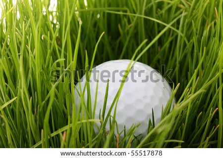 Ball for game in a golf among a grass.
