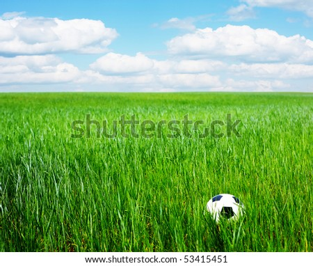 Ball in deep meadow green grass with blue sky with clouds - stock photo
