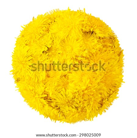 Ball of dandelions. isolated on a white background - stock photo