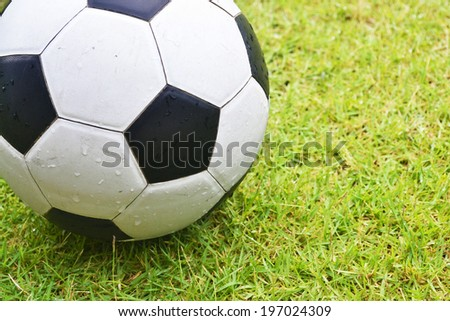 ball on grass - stock photo