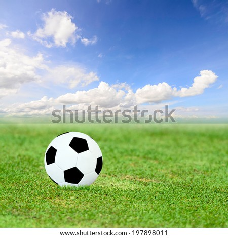 Ball on green field and blue sky - stock photo